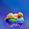 ユーザー Mighty No. 7561 Fruits の写真